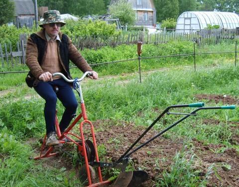 Сделай своими руками для огорода